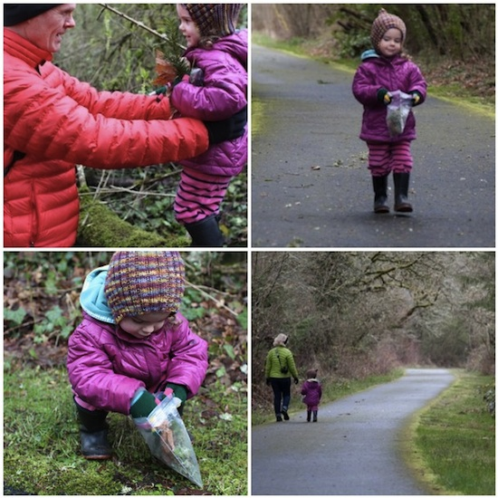 Mosaica plant walk